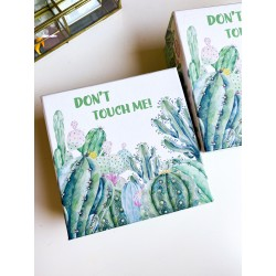"""Scatola con Cactus """"Don't..."""