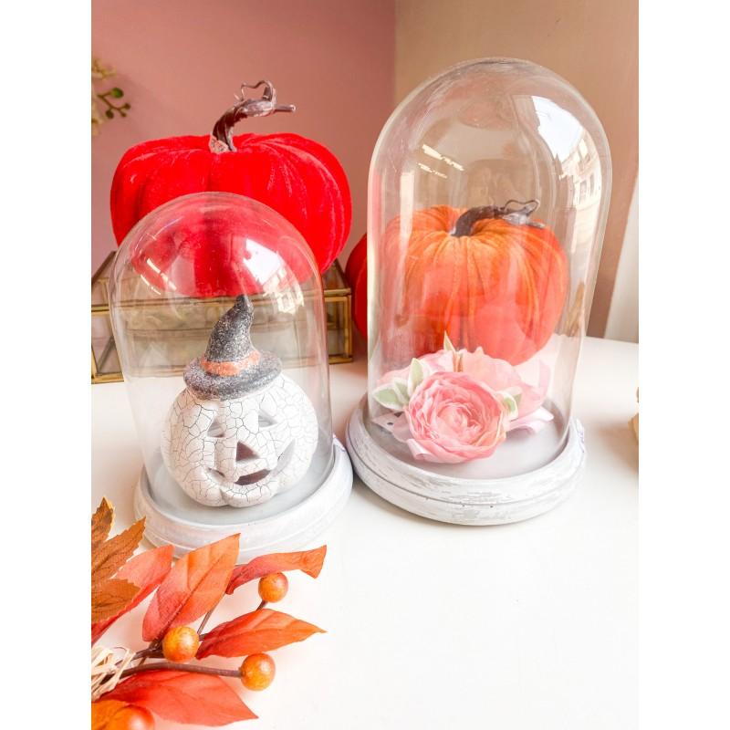 Cloche con base in gesso e campana in vetro in due misure